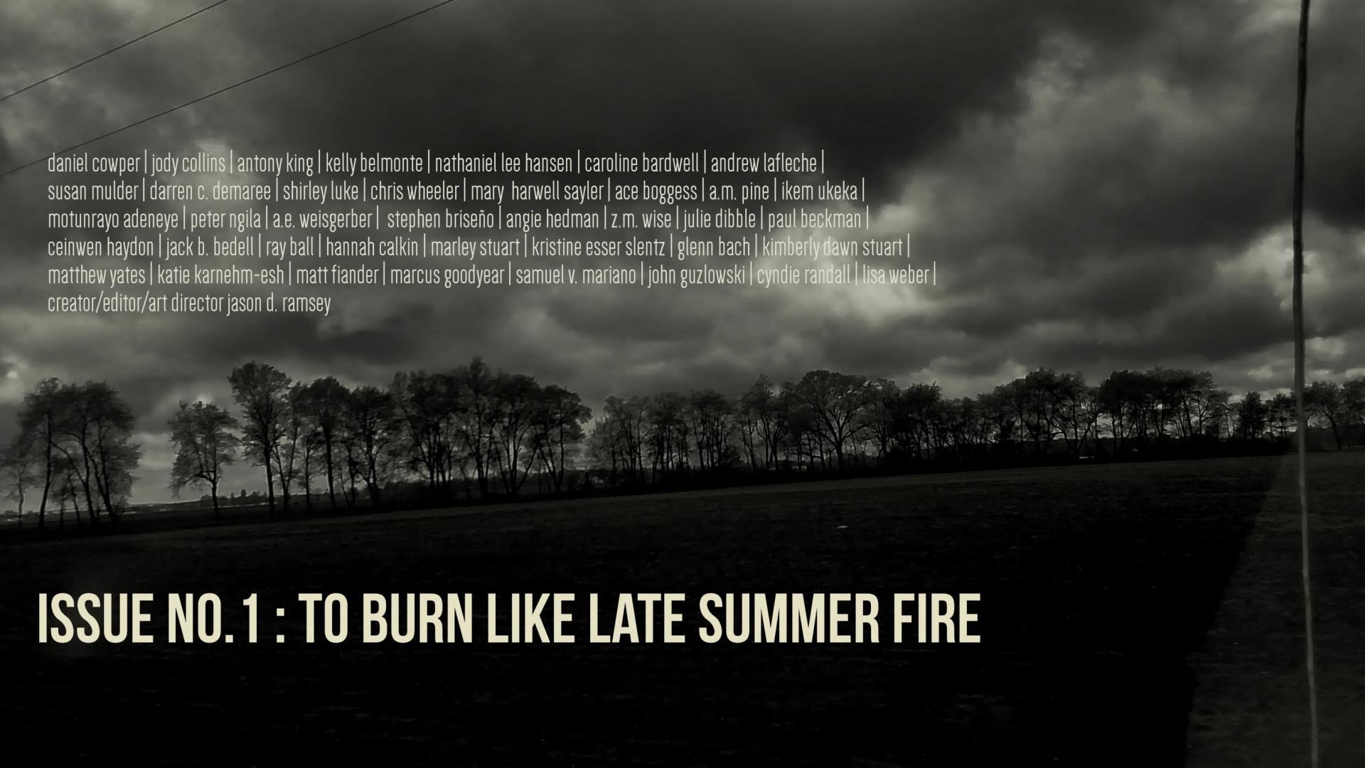 toburnlikelatesummerfirecover