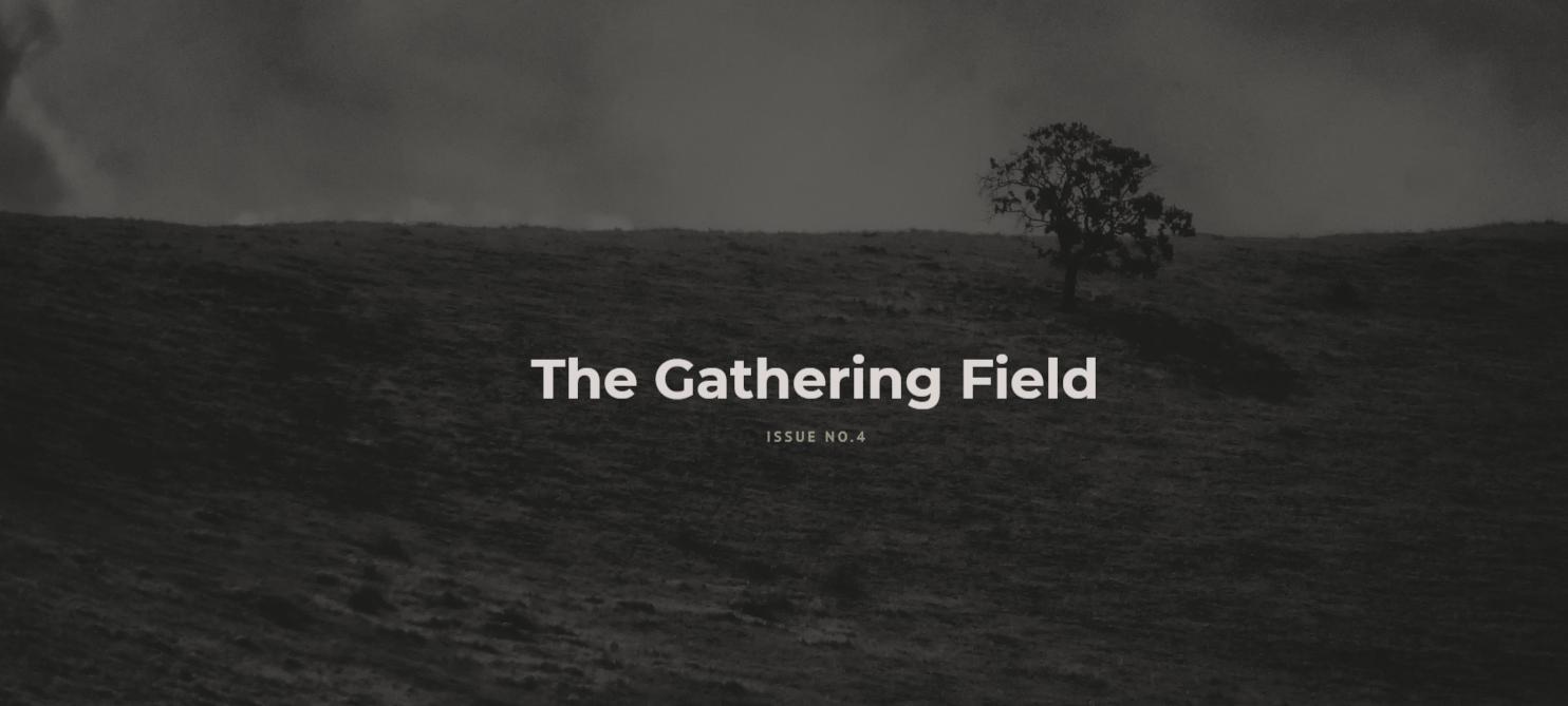Barren Magazine - The Gathering Field