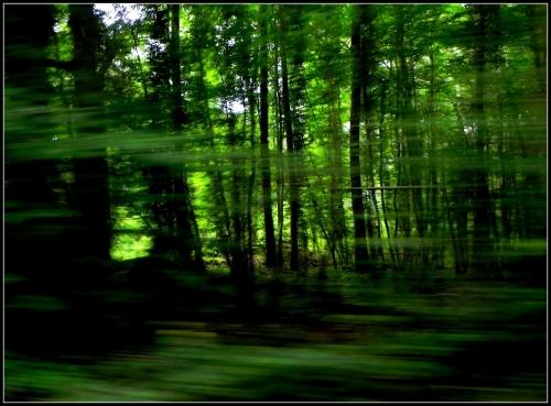 3_Photomatiere21©AnnePaulet