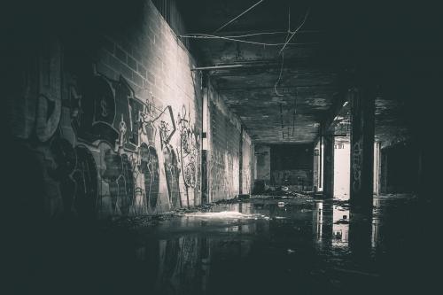 Barren-Urban-Decay-12