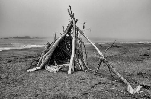 CN-Driftwood_Shelter_3000