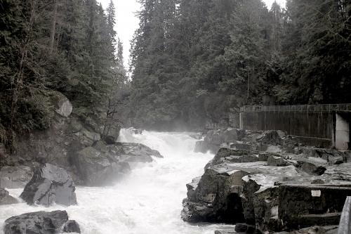 Evergreen-falls