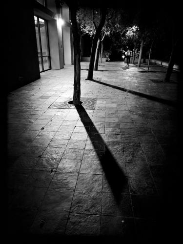 IMG_2735-Walk_1920