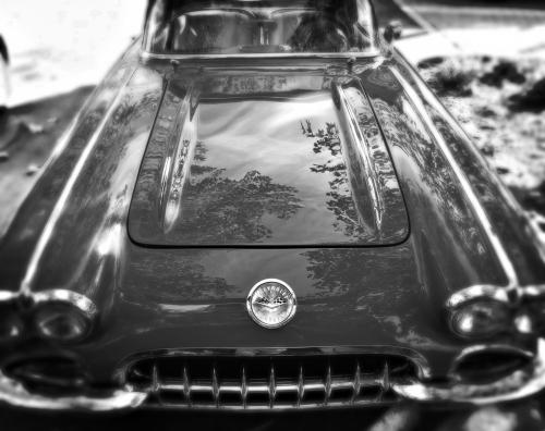 IMG_9601-Corvette