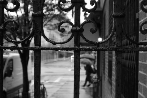 NY Rainy Day