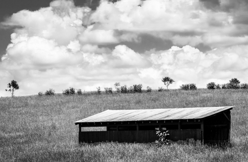 Shed-Field-Clouds-Composition