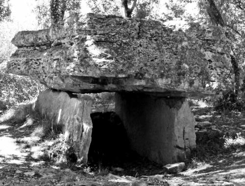 Stones 14