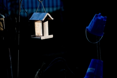 garnilate at night, the birdhouse dances with the buckets