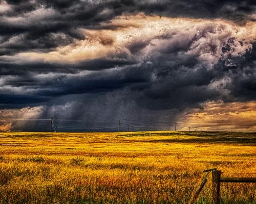 lingoStorm on the Plains