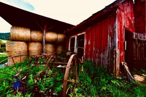 shipleyfarm